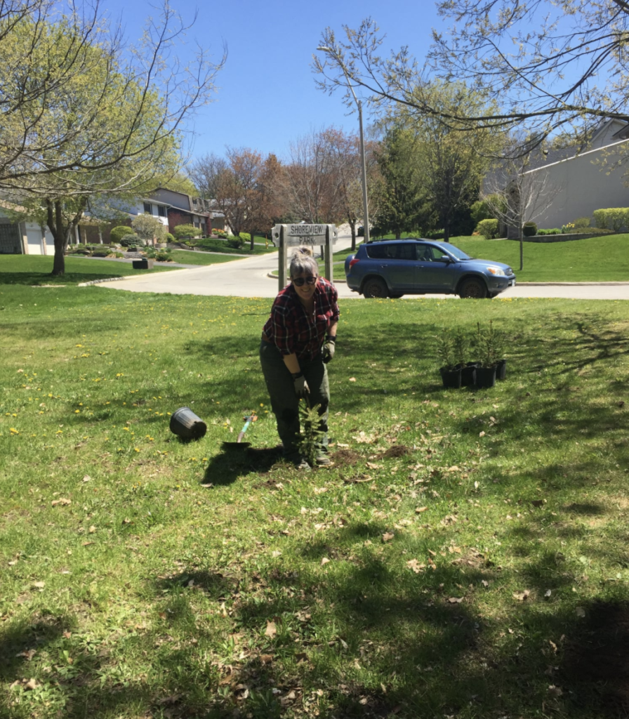 Andee Pelan plants a tree as part of the LGB 10,000 Trees for Barrie campaign.